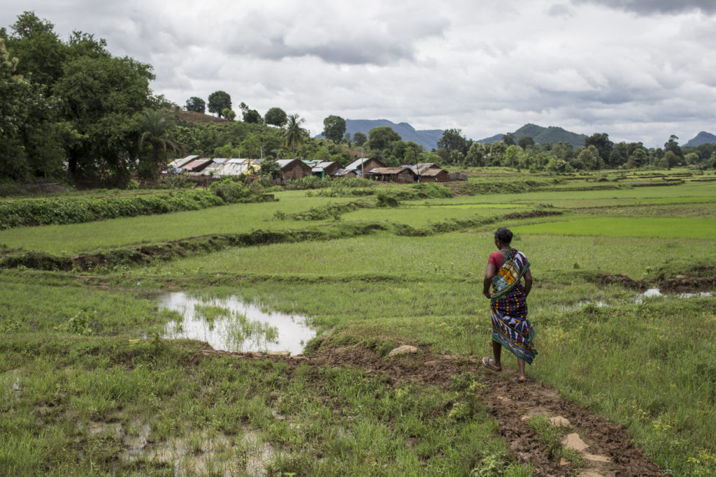 After she finished her work on one of her fields Mrs. Ruai Urlaka, who was part of the GHI study 2016, walks towards Langi village in Odisha, India.